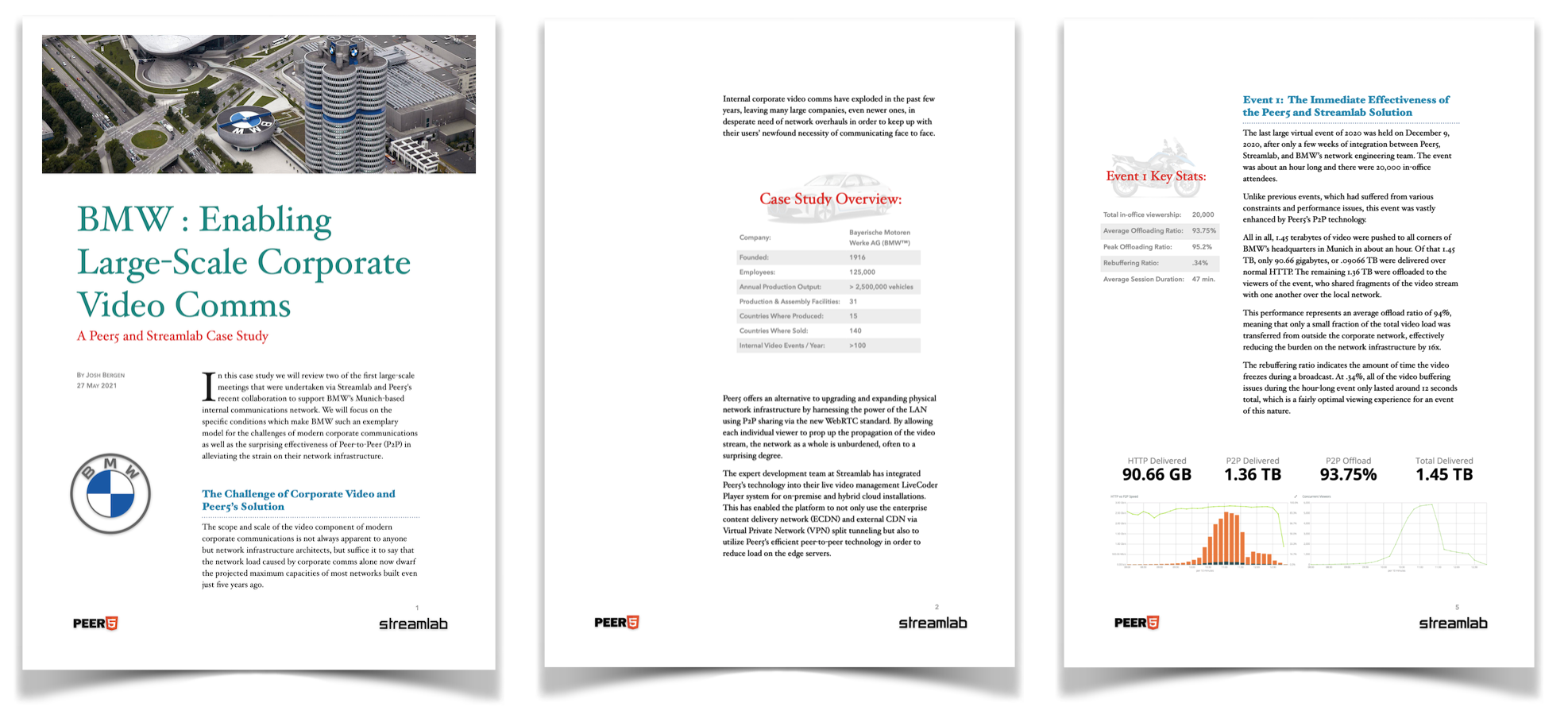 BMW Case Study Preview 1